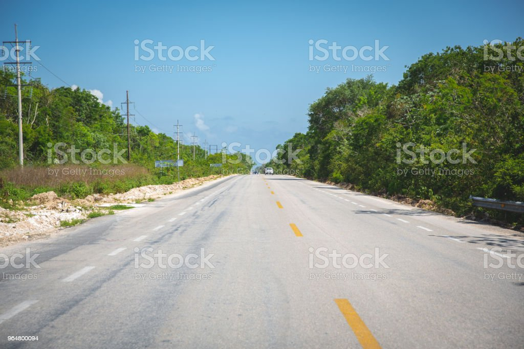 Empty road of Yucatan in the middle of the jungle in Mexico royalty-free stock photo