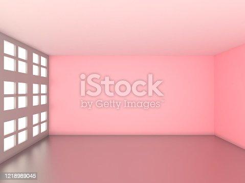 521806786 istock photo Empty room 1218989045