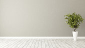 empty room with plant and brown wall