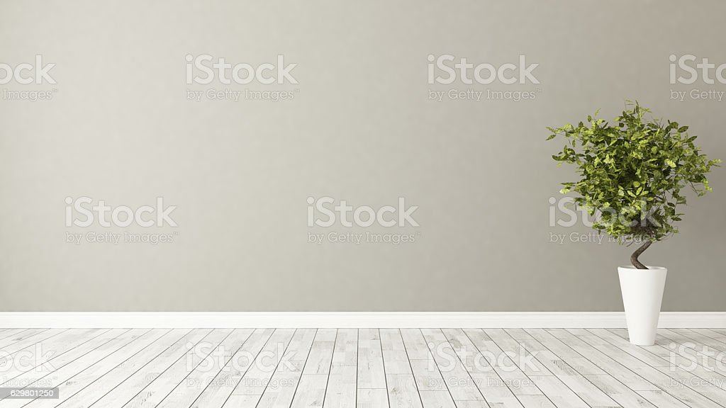 empty room with plant and brown wall stock photo