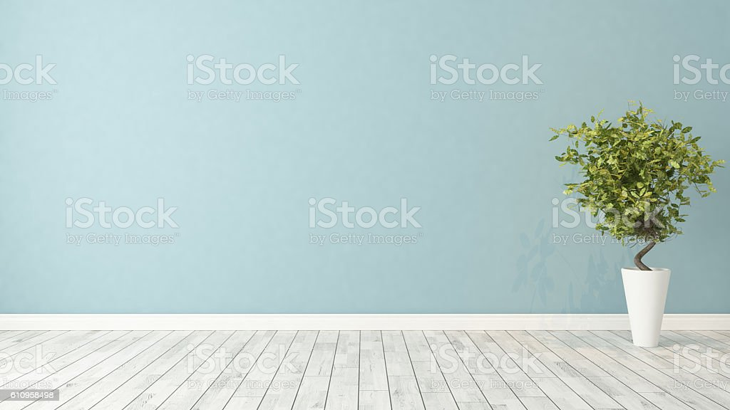 empty room with plant stock photo
