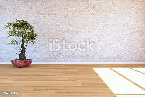 629801250istockphoto Empty Room With Plant 994303084