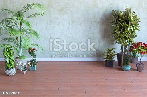 629801250istockphoto Empty Room With Plants and Concrete Wall 1151870263