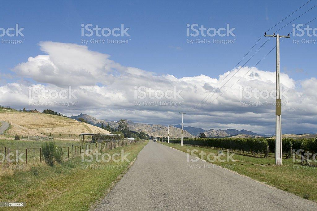 Empty rural road through vineyards royalty-free stock photo