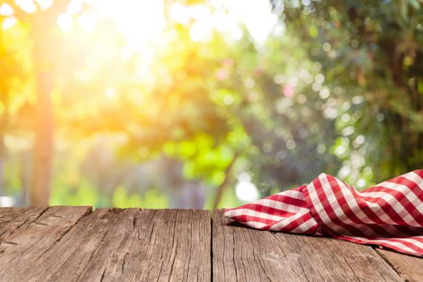 Leerer, rustikaler Picknicktisch mit Gingham Tuch vor defokussiertem Naturhintergrund – Foto