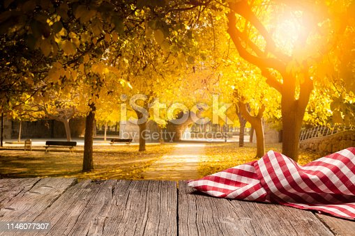 1048926386 istock photo Empty rustic picnic table with gingham cloth against defocused nature background 1146077307