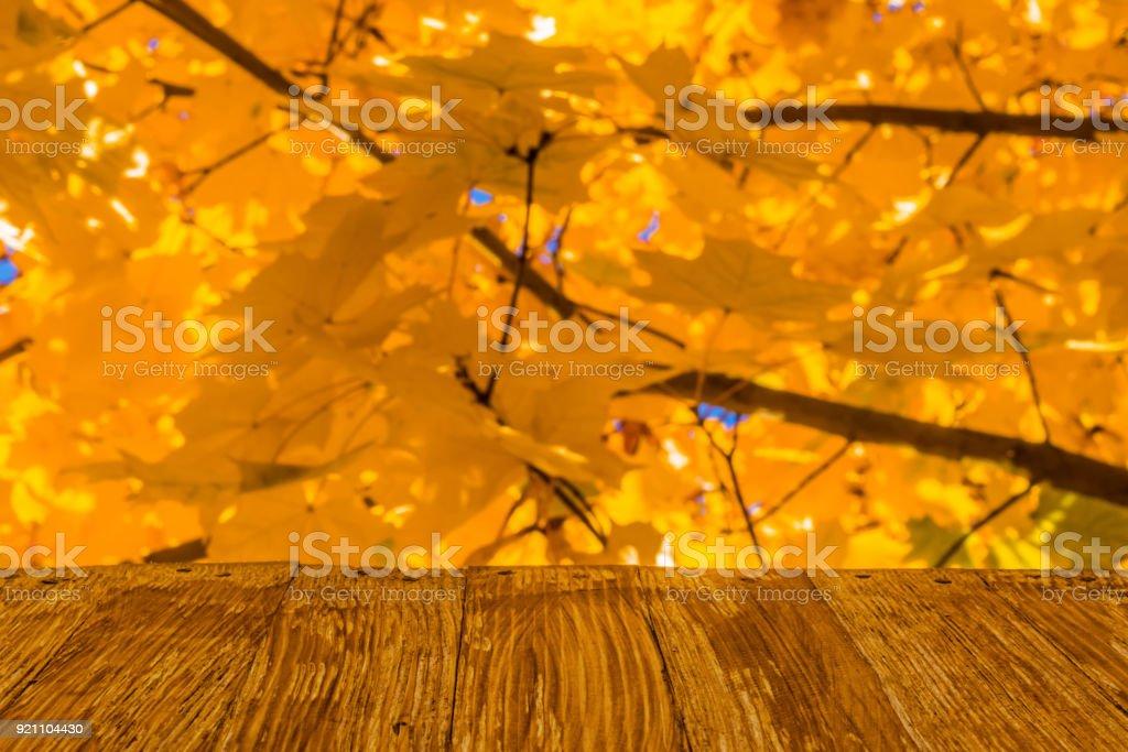 690322c3d57 Vacío rústico madera mesa en otoño colorido deja fondo de bosque de otoño  brillante. Puede