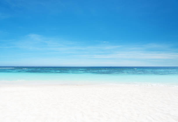 Empty sandy beach and sea with clear sky background picture id1153964825?b=1&k=6&m=1153964825&s=612x612&w=0&h=iohke9l4rxlpvn99q2asjldpwbeign4k4yiepi ahl8=