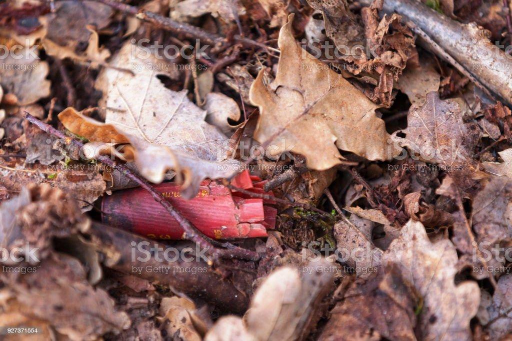 Empty shotgun shell - Royalty-free Abandoned Stock Photo
