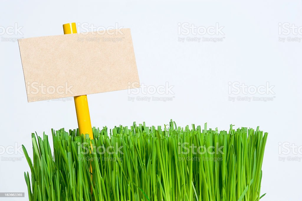 Empty sign on a piece of grass stock photo