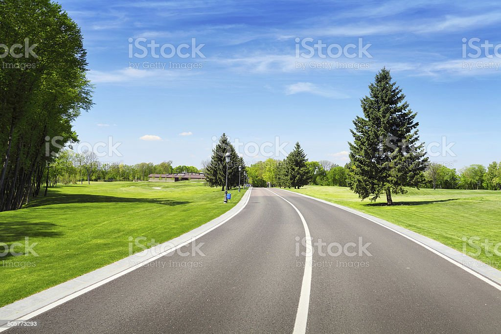 Empty sphalt road and green pine tree stock photo