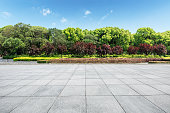 Empty square floor and green forest nature landscape