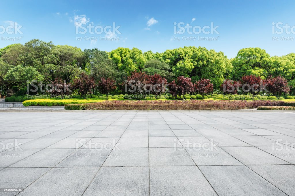 Empty square floor and green forest nature landscape stock photo