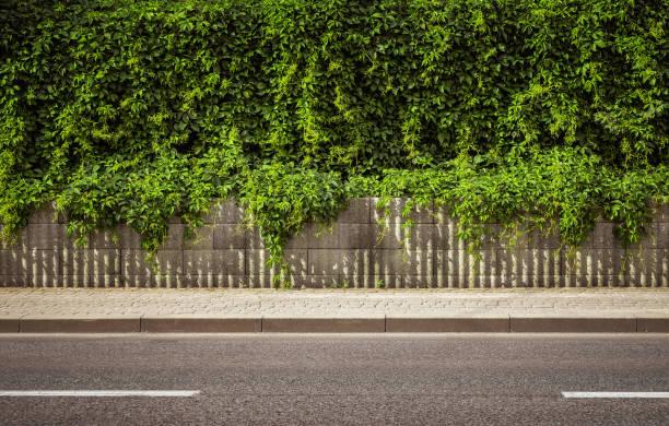 Empty street background picture id979935664?b=1&k=6&m=979935664&s=612x612&w=0&h=cmlvmzthjgtwgvqcdv7ywdt hh86epnivxtf2cju27m=