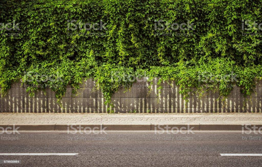 Leerer Straße Hintergrund – Foto