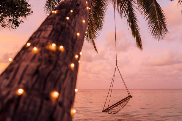leere schaukel in einem tropischen paradies - alles hinter sich lassen stock-fotos und bilder