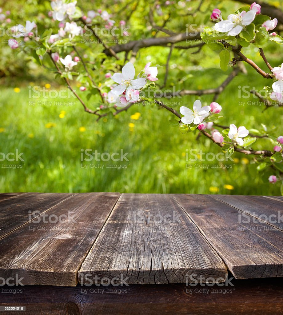 empty table against spring garden stock photo