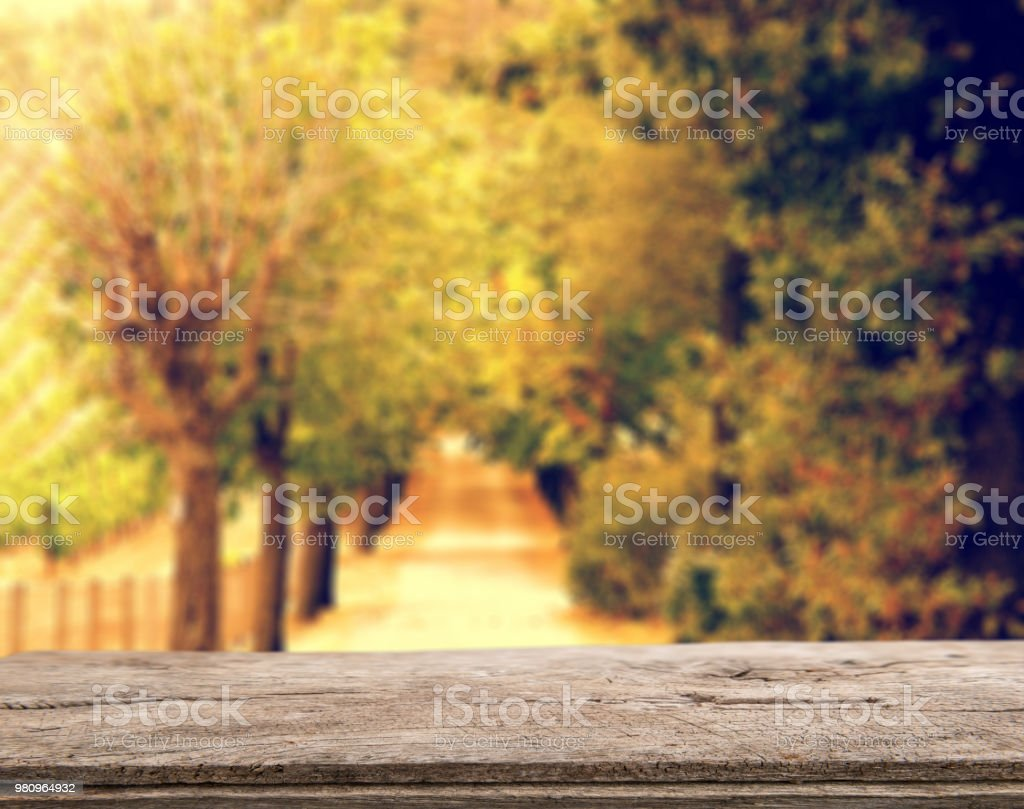 Empty table in front of blurry autumn background stock photo