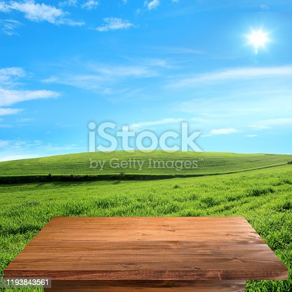 Empty wooden table top in green landscape over clear blue sky. For montage product display or design key visual layout