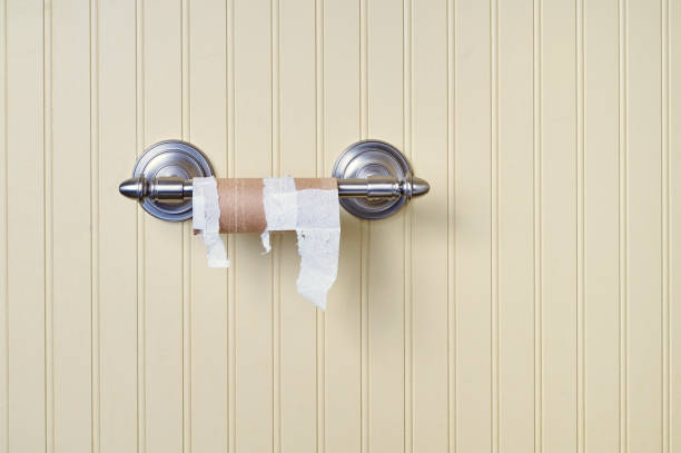 Empty toilet paper roll on hanger horizontal format stock photo