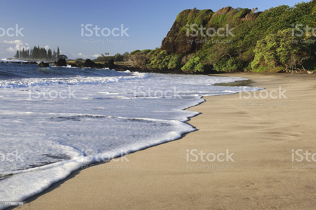 Empty Tropical Beach in the Morning Sun stock photo