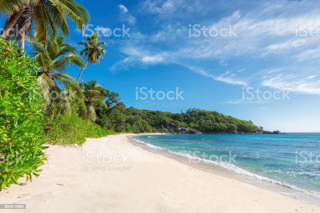 Empty tropical beach on the Seychelles stock photo