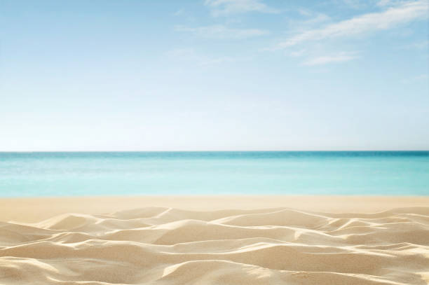 empty tropical beach - beach stock pictures, royalty-free photos & images