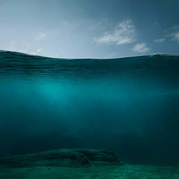 empty underwater background - sea imagens e fotografias de stock