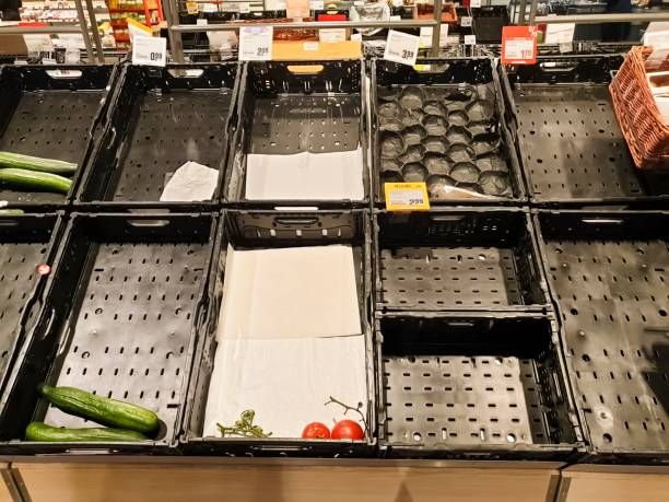 Empty vegetable crates and shelves stock photo