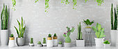 Empty Wall with Green Plants and Cactuses. 3d Render