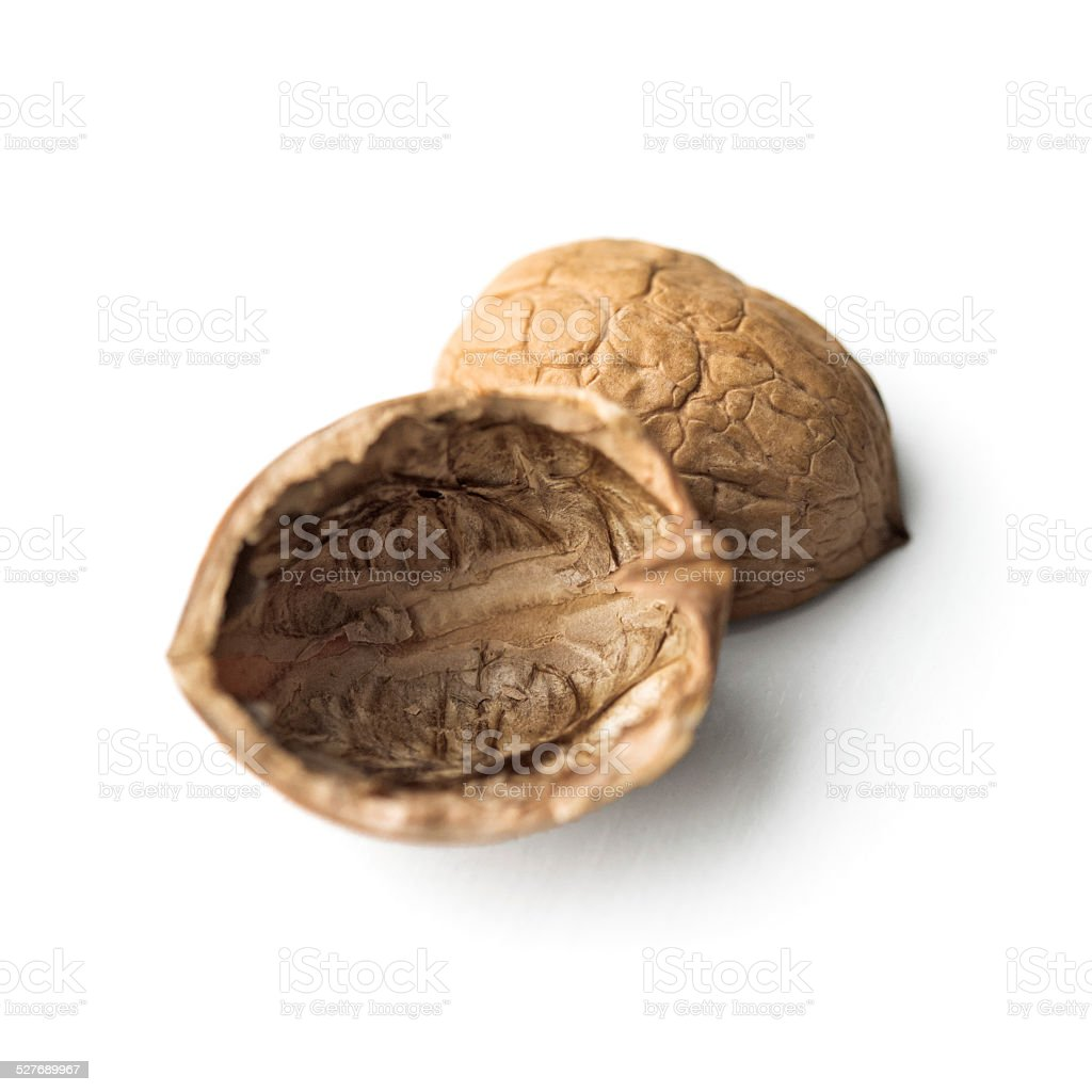 Empty walnut shell on white stock photo