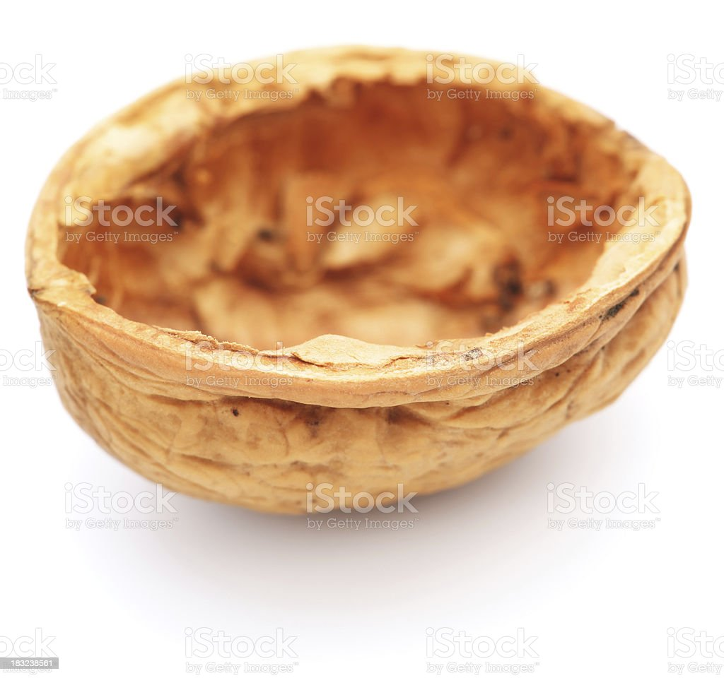 Empty walnut shell royalty-free stock photo