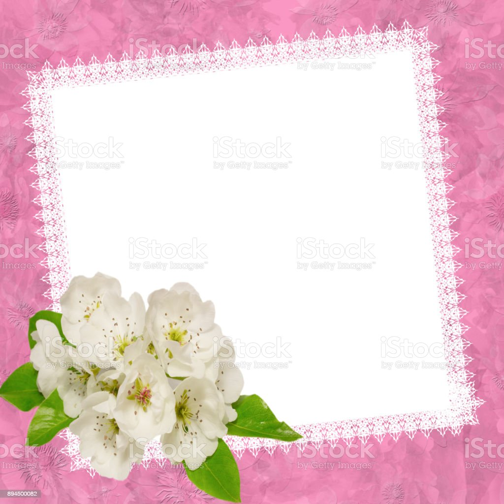 Empty White Blank With Apple Flowerstemplate For Greeting Cards