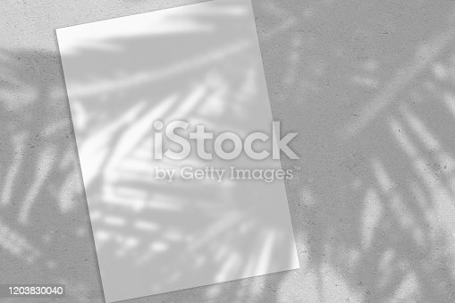 istock Empty white vertical rectangle poster or card mockup with palm leaves shadows 1203830040