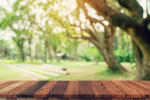 Empty wood table and defocused bokeh and blur background of garden trees in sunlight. display montage for product.