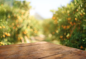 istock Empty wood table with free space over orange trees, orange field background. For product display montage 1202189113