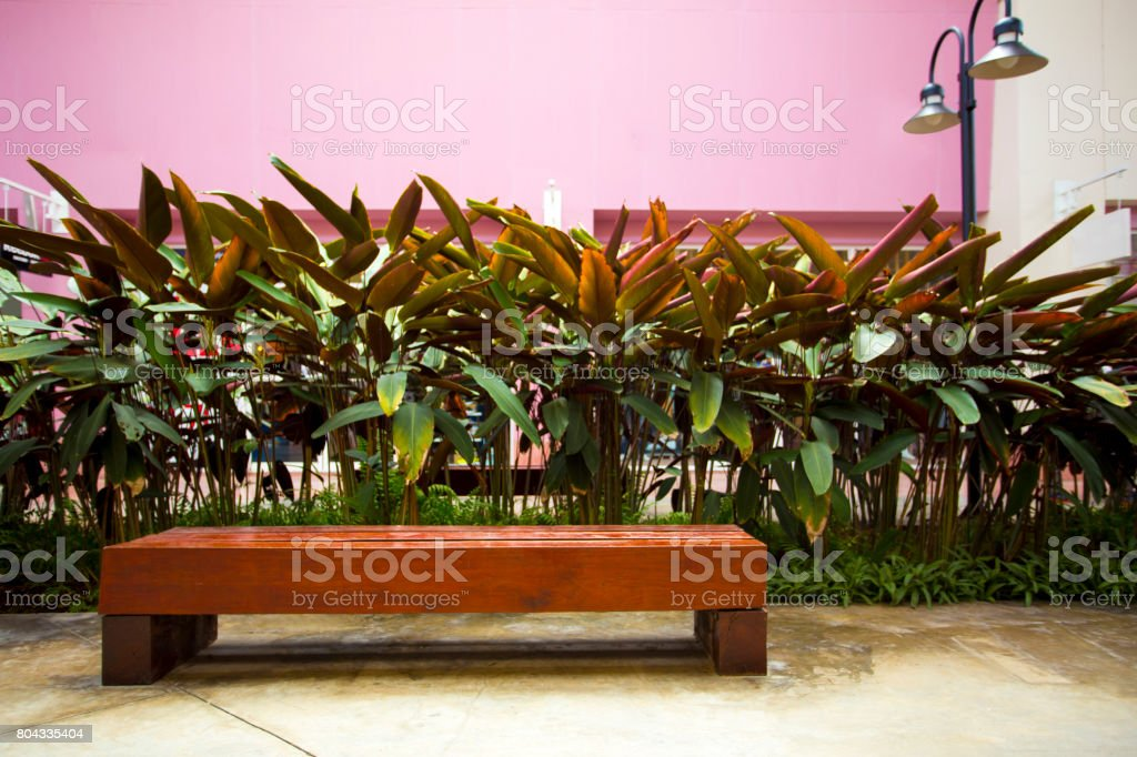 Empty wooden bench chair beautiful plant wall lighting lamp shown...