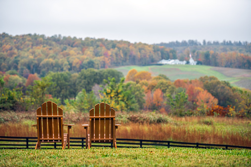 Empty wooden chairs in autumn fall foliage season countryside at Charlottesville winery vineyard in blue ridge mountains of Virginia with cloudy sky day