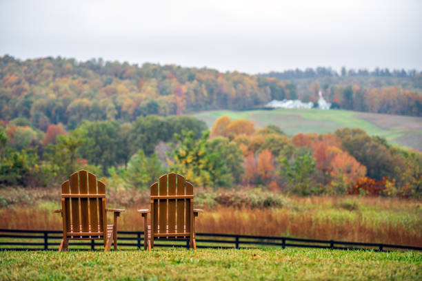 Empty wooden chairs in autumn fall foliage season countryside at Charlottesville winery vineyard in blue ridge mountains of Virginia with cloudy sky day stock photo