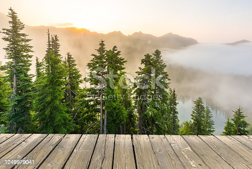 989111446 istock photo empty wooden deck table top Ready for product display montage with forest and lake in the sunset background. 1249979041