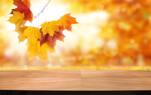 Empty wooden deck table with foliage bokeh background. Ready for product display montage. - foto stock