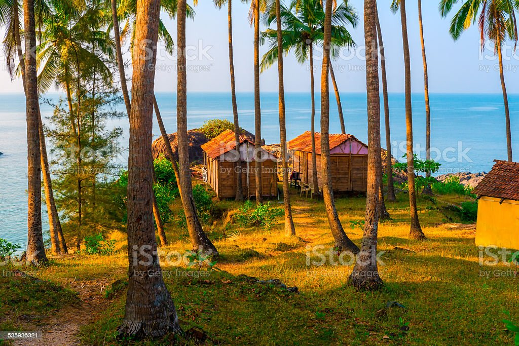 empty wooden houses among the tall trees in the resort stock photo
