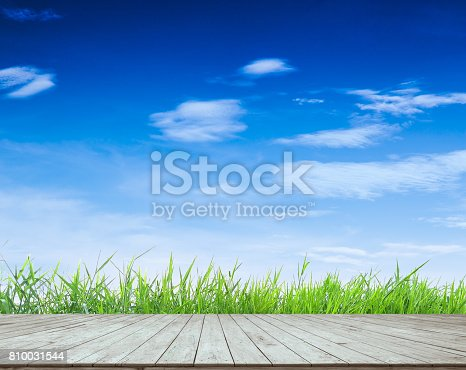 empty wooden plank with green grass and beautiful blue sky and clouds, for display or montage product or other background