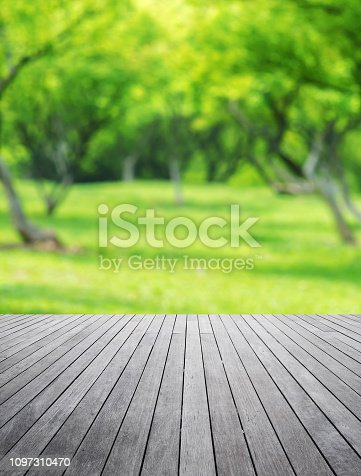 1067054470istockphoto Empty Wooden Platform And Spring Green Blurred Abstract Background 1097310470