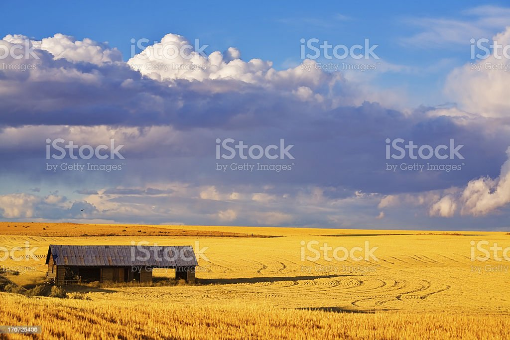 Empty wooden shed stock photo
