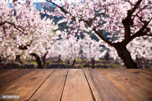Photo montage of an empty wooden table against defocused almond trees background. Ideal for product display.