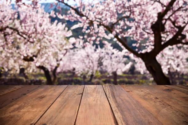 leere holztisch gegen defokussierten mandelbäume - nussbaumholz stock-fotos und bilder