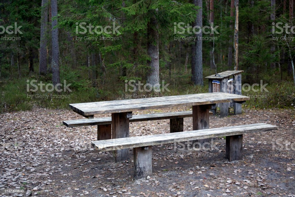 Empty wooden table and bench in spring wild forest - Royalty-free Bench Stock Photo