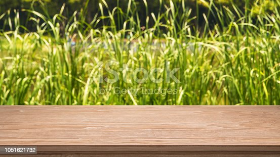 989111446istockphoto Empty Wooden Table And Grass Abstract Background 1051621732