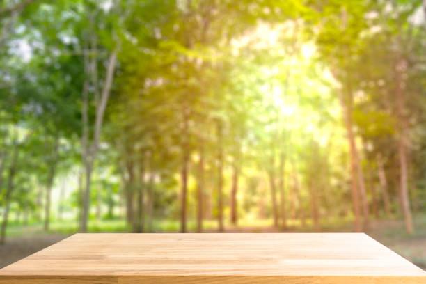Leere Holztisch für Produkt anzeigen und verschwommen Wald im Hintergrund – Foto